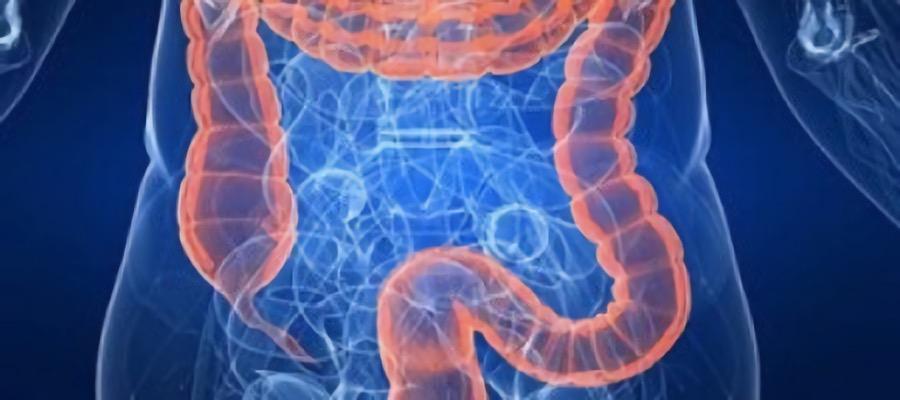 hidroterapia-de-colon-depurar-toxinas