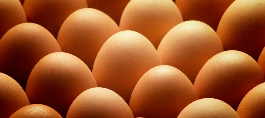 huevos-guillen-02