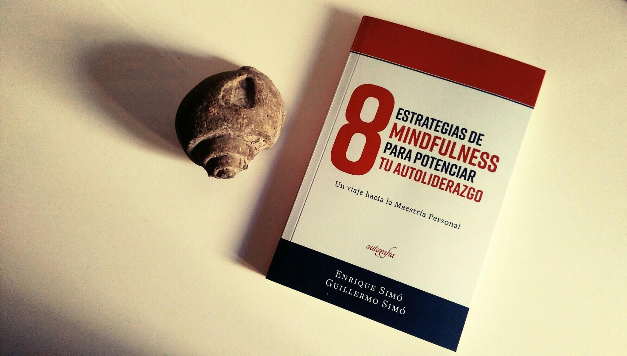 libro con piedra
